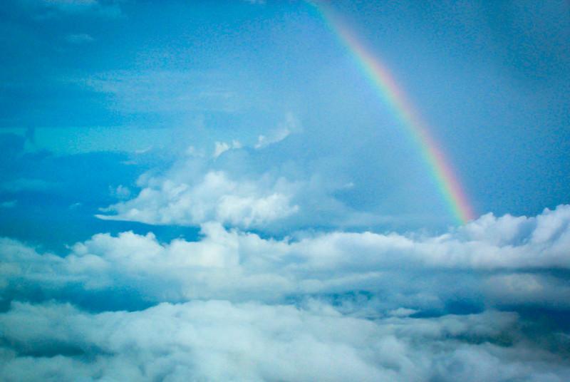 Fiji Rainbow