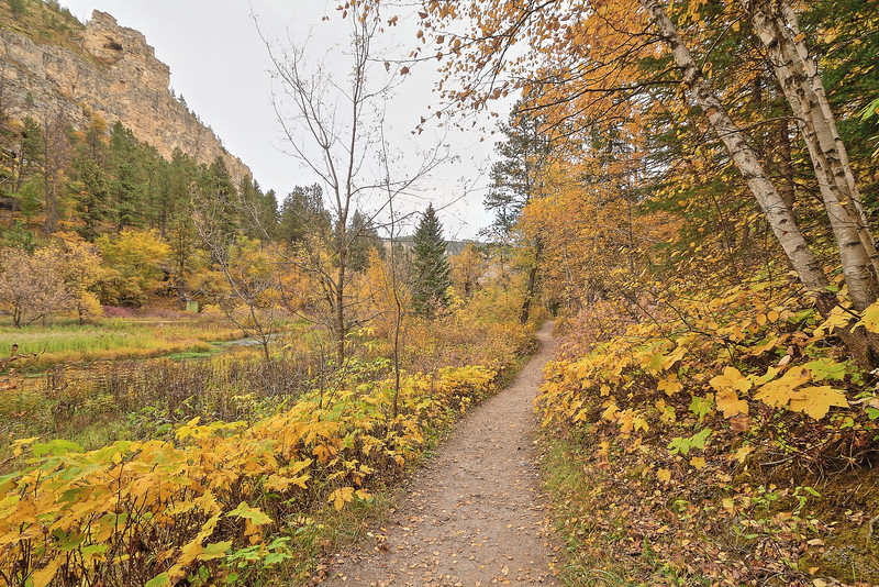 Roughlock Falls trail in Spearfish Canyon
