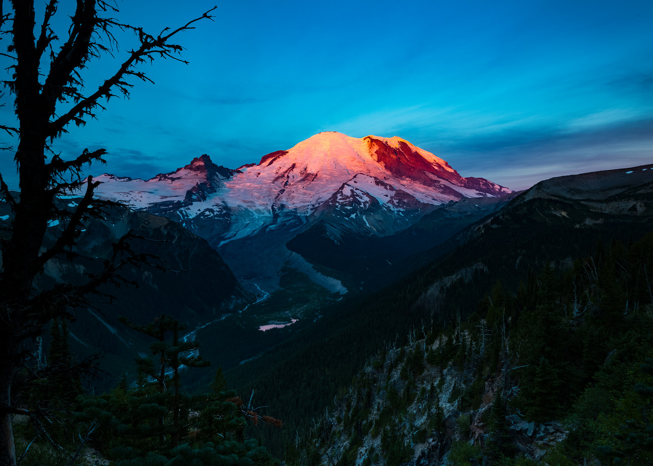 Mt Rainer Sunrise