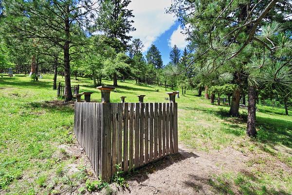 Vinegar Hill Cemetery in Galena