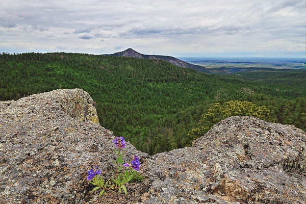 View from atop Citadel Rock south of Crow Peak