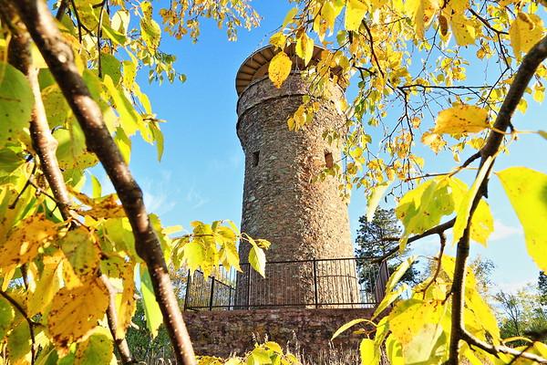 Fall colors on Mount Roosevelt near Deadwood