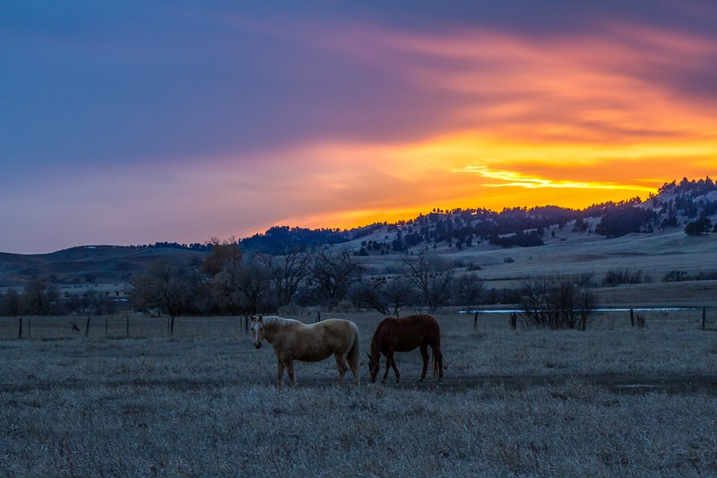 sunset north of Spearfish