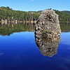 Rock in Center Lake in Custer State Park
