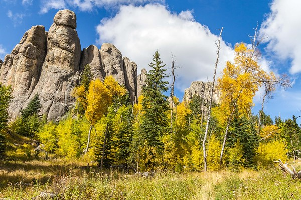 Fall colors in Custer State Park