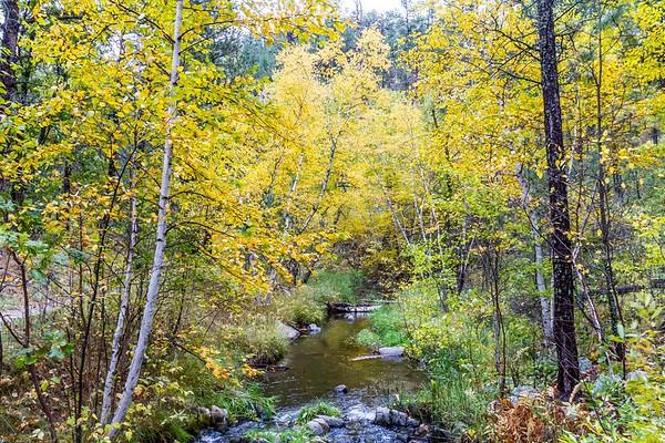 Galena Creek in Custer State Park