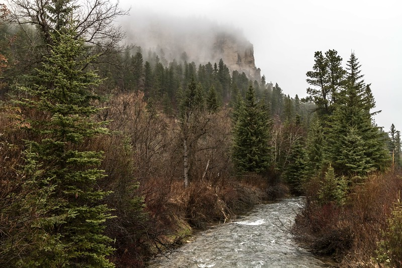 Foggy in Spearfish Canyon