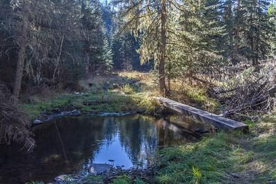 Foot bridge across Slate Creek along the Deerfield Trail