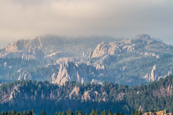 Fog in the Black Hills