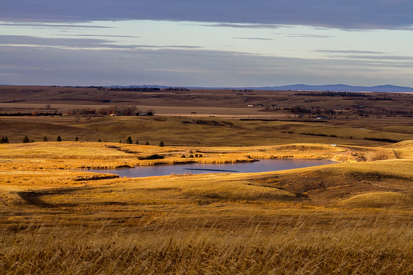 Ft. Meade Reservoir