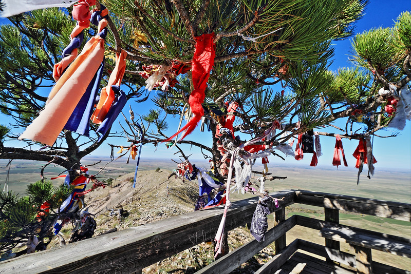 Prayer cloths on the summit of Bear Butte