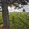Black Hills National Cemetery near Sturgis