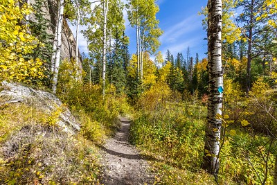 Fall colors along the Little Devil's Tower trail in Custer State Park