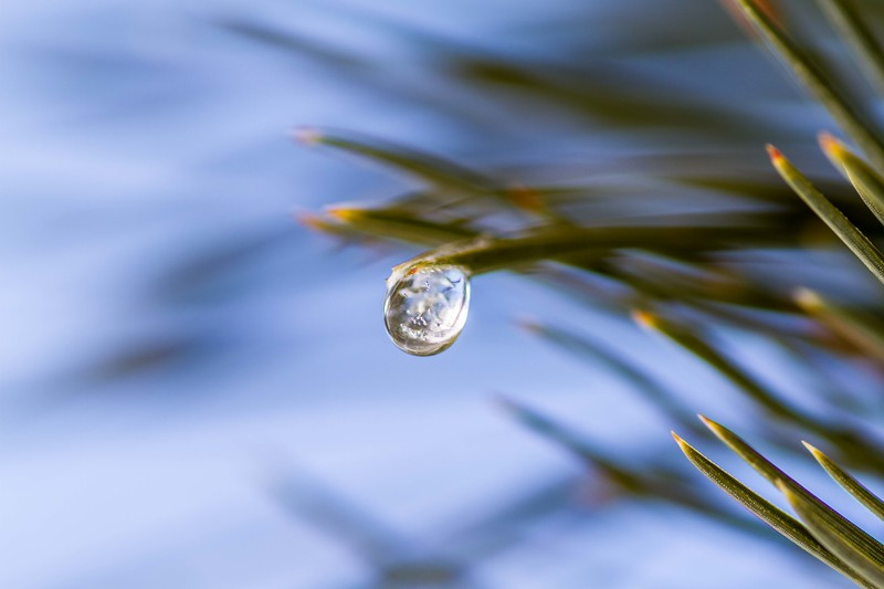 Frozen water droplet