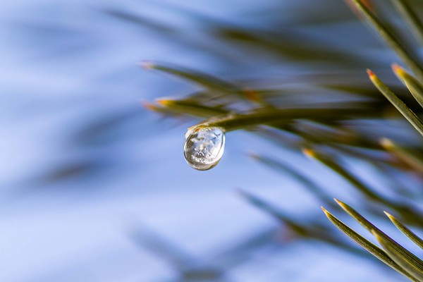 Frozen water droplet