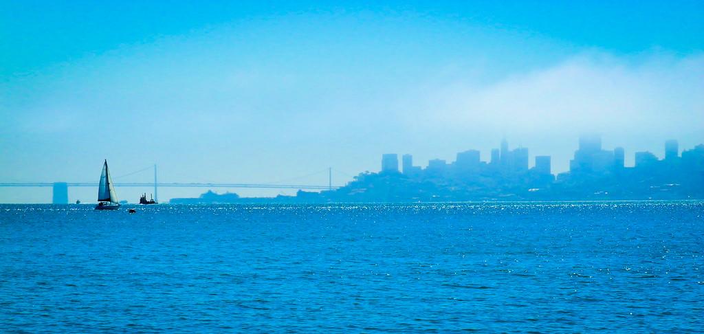 San Francisco Bay Cityscape
