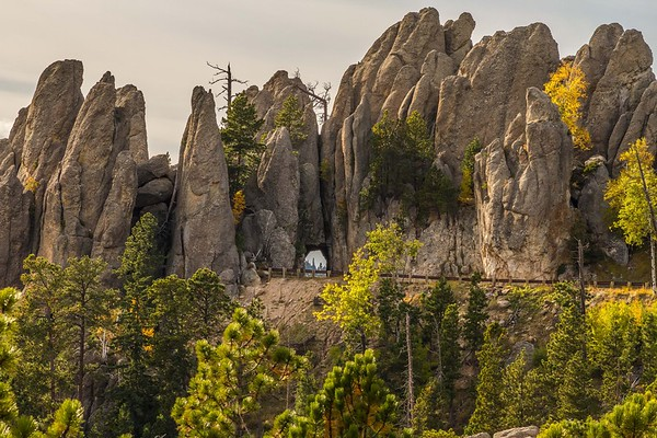 Autumn along the Needles Highway in Custer State Park