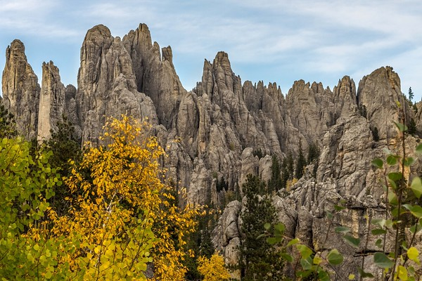 Autumn in Custer State Park