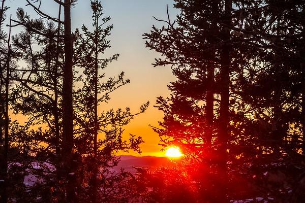 Sunset through the trees on Terry Peak