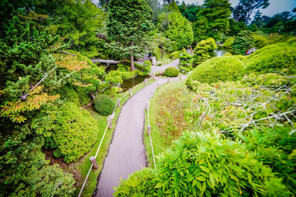 Japanese Tea Garden in San Francisco, August 2014