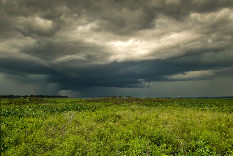 Summer Storm, Paynes Prairie, FL