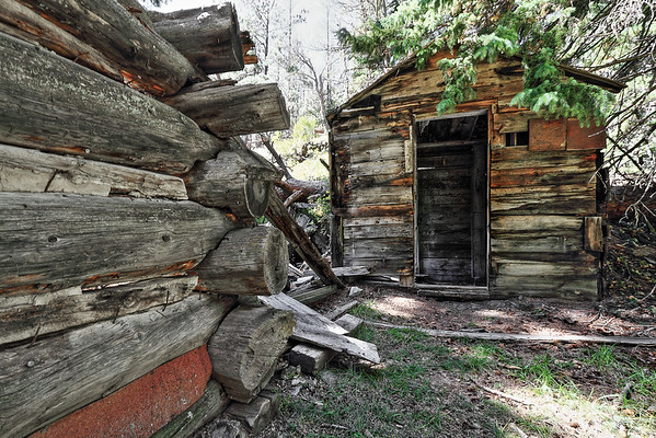 Flannigan Cabin remnants along the Deerfield Trail