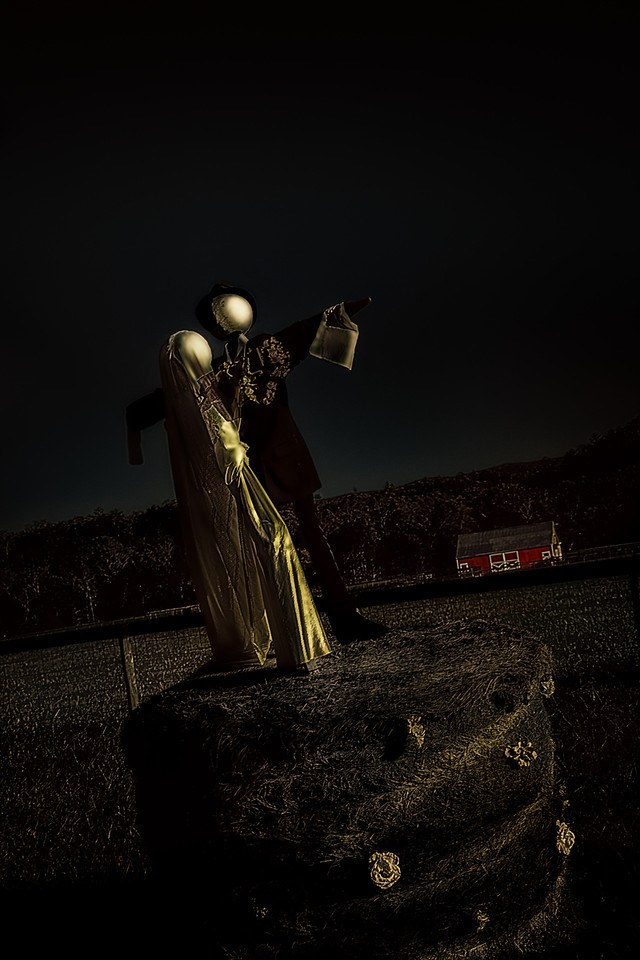 <a>Scarecrow Wedding by Moonlight Augen 2013</a>
