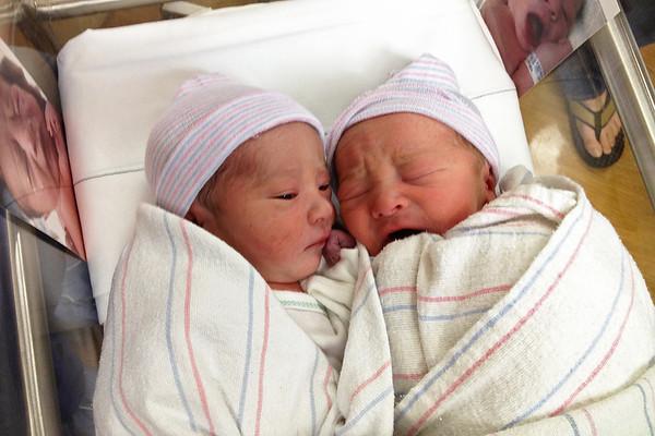2013 -1: Fourth and Fifth Grandchildren