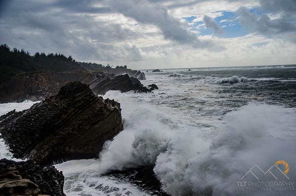 Shore Acres State Park, Oregon. Please Follow Me! https://tlt-photography.smugmug.com/