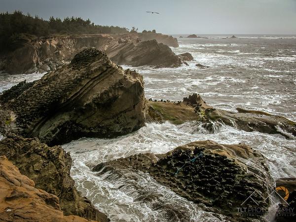 The upturned rocks of Cape Arago, Oregon. Please Follow Me! https://tlt-photography.smugmug.com/