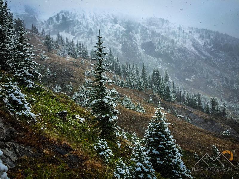Fresh snow as we ascend towards Ice Lake in the Wallawas of Oregon. Please Follow Me! https://tlt-photography.smugmug.com/
