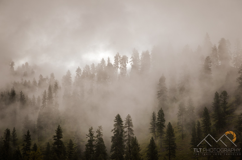 Morning fog lifting off the hillside above our 2nd campsite on the Salmon River. Please Follow Me! https://tlt-photography.smugmug.com/