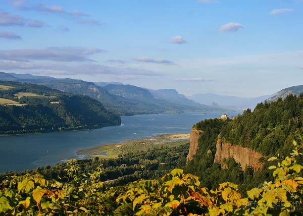 Chanticleer Point in the Columbia River Gorge, Oregon. Please Follow Me! https://tlt-photography.smugmug.com/