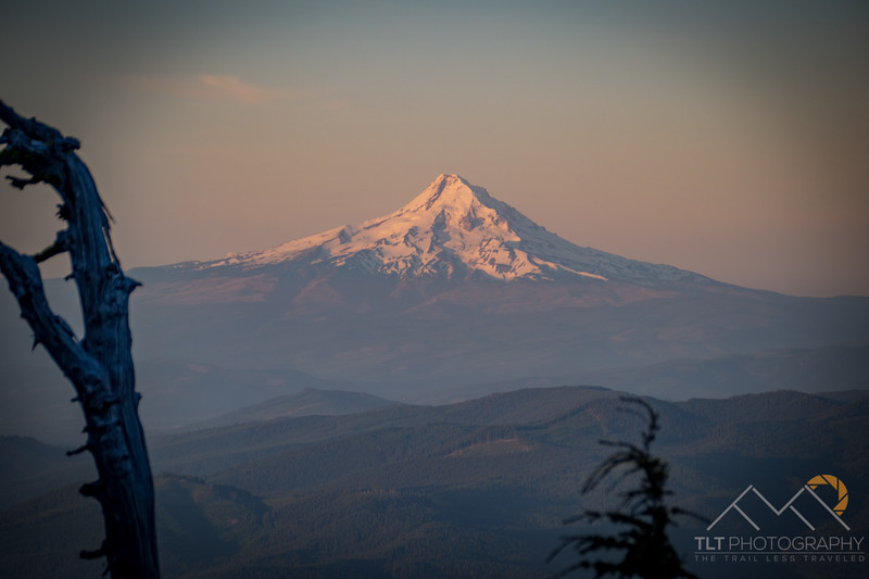 Mount Hood at Sunrise from Mount Adams. Please Follow Me! https://tlt-photography.smugmug.com/