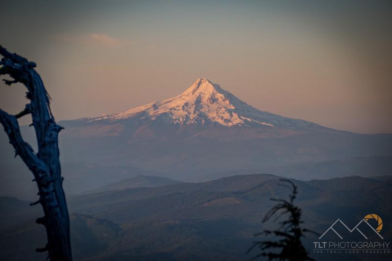 Mount Hood at Sunrise from Mount Adams. Please Follow Me! https://tlt-photography.smugmug.com/