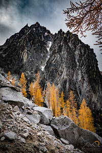 Golden larches and Dragontail Peak on the ascent up Aasgard Pass in the Enchantments of Washington. Please Follow Me! https://tlt-photography.smugmug.com/