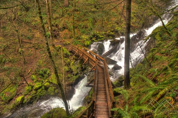 A bridge over Hardy Creek on our hike up Hamilton Mountain on the Washington side of the Gorge. Please Follow Me! https://tlt-photography.smugmug.com/
