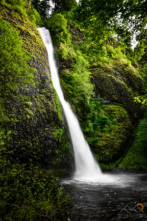 Horsetail Falls in the Columbia Gorge, Oregon. Please Follow Me! https://tlt-photography.smugmug.com/