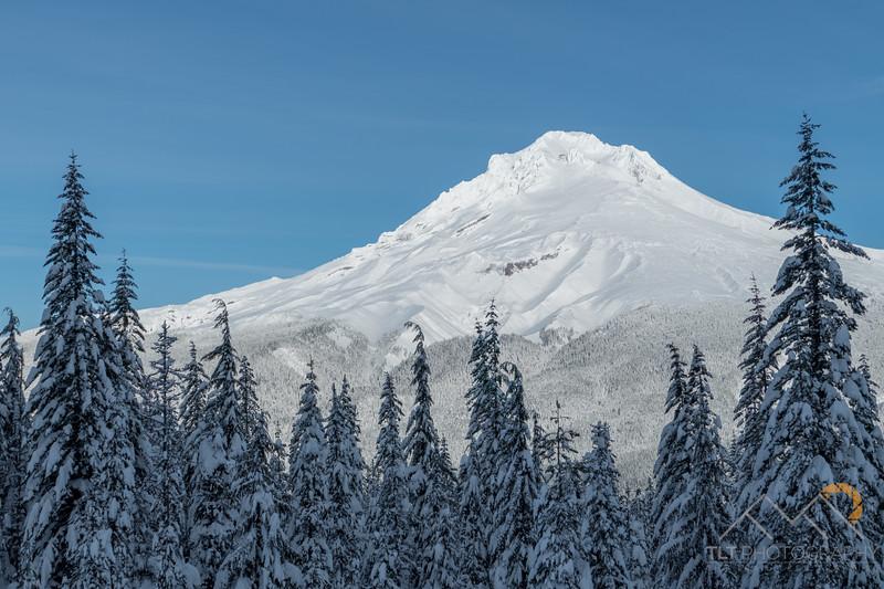 Mount Hood from near Mirror Lake on a backcountry skiing trip. Please Follow Me! https://tlt-photography.smugmug.com/