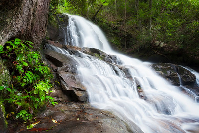Laurel Falls in Great Smoky Mountains
