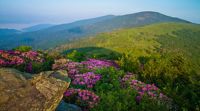 Overlooking Rhododendrons and Jane Bald Appalachian Trail can be seen in the distance.