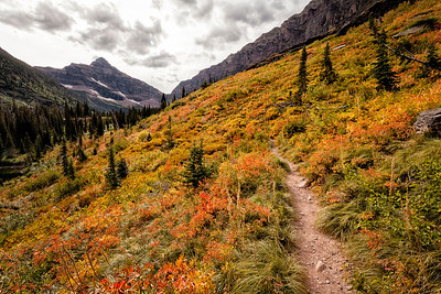 Upper Two Medicine Lake Trail We took the boat across Two Medicine Lake and then hiked to Upper Two Medicine Lake.   The colors on this hillside were fantastic.