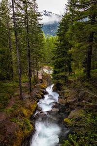 Nickel Creek Mount Rainier National Park