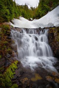 Sunbeam Creek Mount Rainier National Park
