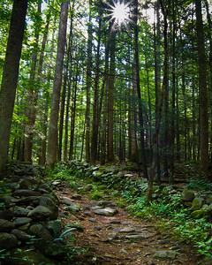 "Noah ""Bud"" Ogle Nature Trail"