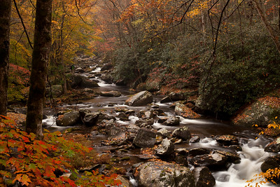 11 Fall In The Smokies