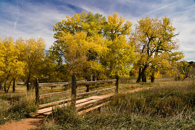 A Bridge To Fall Garden of The Gods Colorado Springs