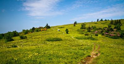 Beautiful Morning On The Appalachian Trail