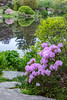 Asticou Azalea Garden