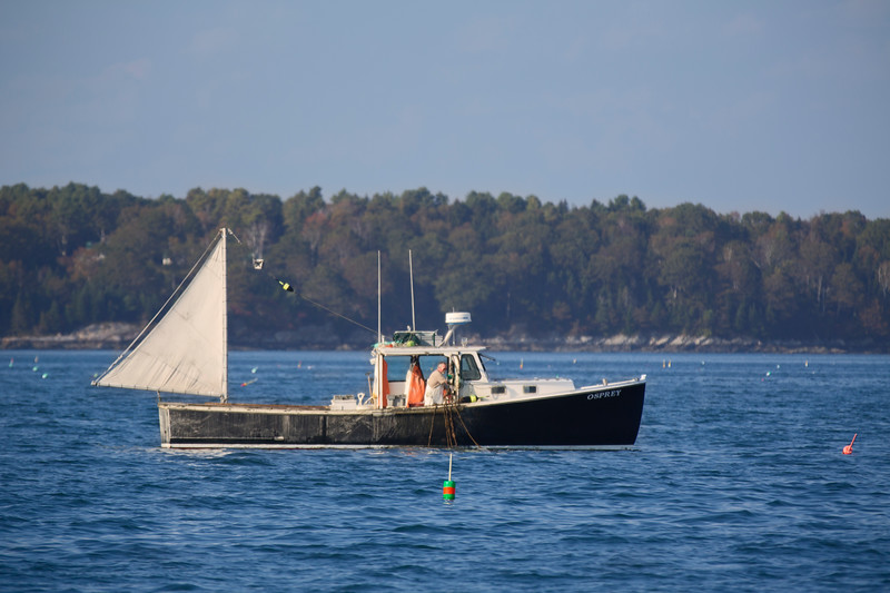Lobster Boat, Casco Bay, Maine